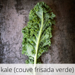 GlutenFree-Couve-frisada-verde-1