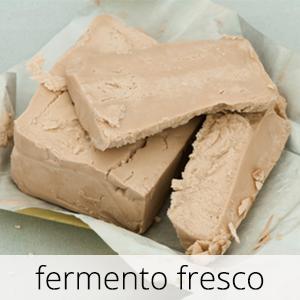 GlutenFree-Fermento-Fresco-1