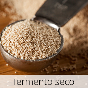 GlutenFree-Fermento-Seco-1