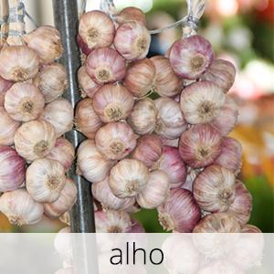 GlutenFree-alho-1