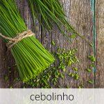 GlutenFree-Cebolinho