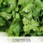 GlutenFree-Coentros-1