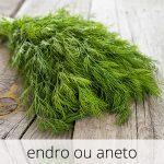 GlutenFree-Endro-ou-aneto