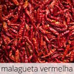 GlutenFree-Malagueta-1