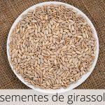 GlutenFree-Sementes-de-girassol