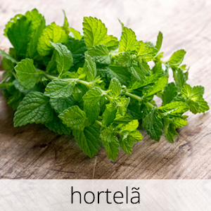 GlutenFree-hortela-1