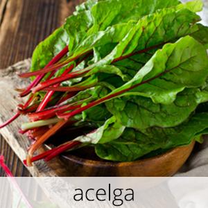 GlutenFree-Acelga-1