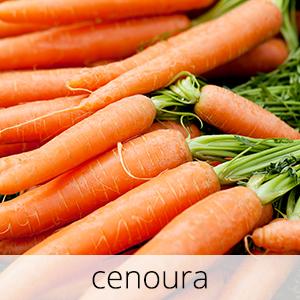 GlutenFree-Cenoura-1