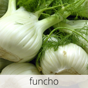 GlutenFree-Funcho-1