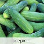 GlutenFree-Pepino-1