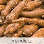 GlutenFree-Mandioca-1