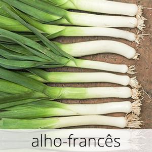 GlutenFree-alho-frances-1