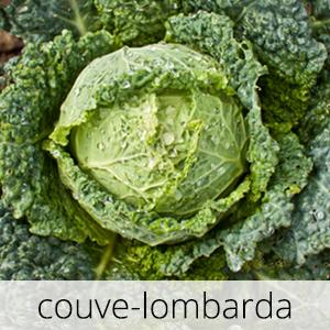 GlutenFree-couve-lombarda-1