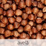 GlutenFree-avela-1