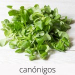 GlutenFree-com-paixao-Canonigos-1