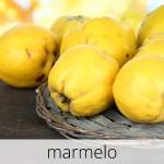GlutenFree-com-paixao-Marmelo-1