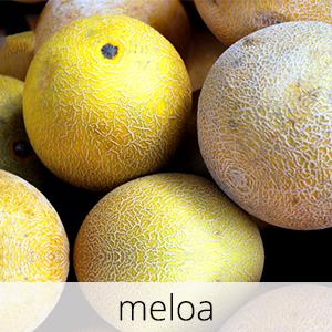 GlutenFree-com-paixao-Meloa-1