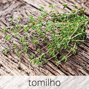 GlutenFree-com-paixao-Tomilho-1